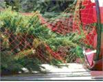 Tree Netting